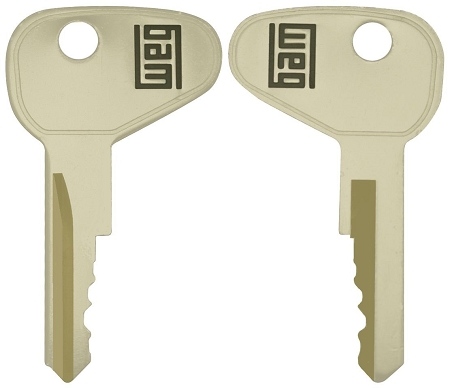 WEG 22mm replacement keys